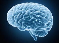 Chemo Brain Workshop: Improving Memory and Concentration