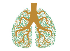 Breathe Easy: What Doctors Want You to Know About Lung Cancer Seminar