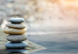 Mindfulness Virtual Course