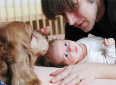 Dogs & Storks Class: Preparing Families With Dogs for Life With Baby