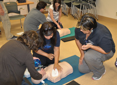 BLS for Health Care Providers Class (or Renewal)